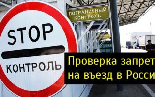 Онлайн проверка наличия запрета на въезд в РФ в 2019 году