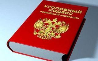 Уголовная ответственность иностранных граждан в РФ – виды и способы наказания