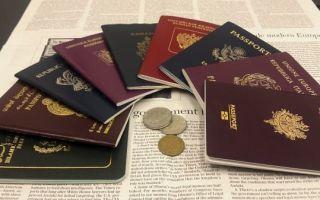 В каких странах разрешено иметь двойное гражданство?