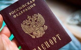 Как проверить онлайн гражданство