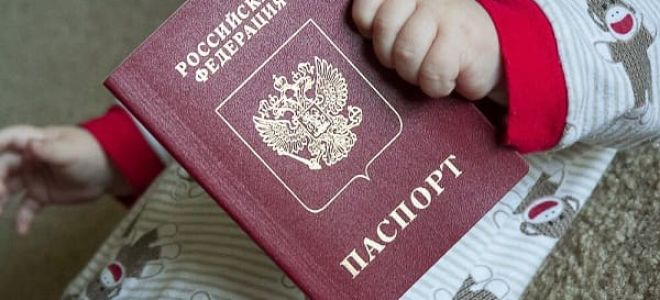 Получение гражданства РФ по праву почвы – предварительные положения и условия участия в программе