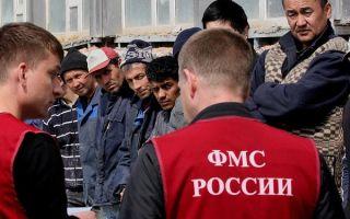 Как и куда жаловаться на нелегальных мигрантов — правила проведения процедуры