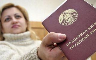 Условия работы в России для граждан Белоруссии – базовые нормы и правила