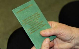 Оформление рабочего патента для граждан СНГ – правила и специфика получения документа