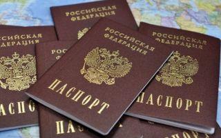 Как гражданину Грузии получить российское гражданство: особенности оформления