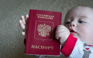 Как быстро и правильно оформить гражданство для новорожденного в 2019 году