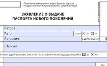 Как правильно заполняется трудовая деятельность в анкете на загранпаспорт